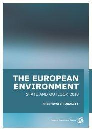 the european environment