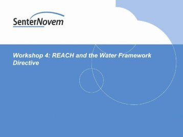 Workshop 4: REACH and the Water Framework Directive