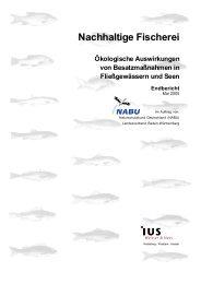 Nachhaltige Fischerei - Ökologische Auswirkungen von ...