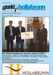 Neues Logo für Hollabrunn - NetTeam Internet