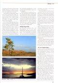 Energetische Wetterarbeit nach Wilhelm Reich - Bernd Senf - Seite 6