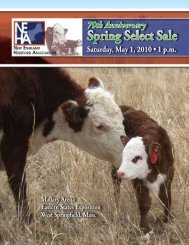 Spring Select Sale - New England Hereford Association