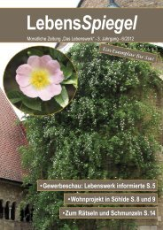 LebensSpiegel 2012/06 - daslebenswerk.de