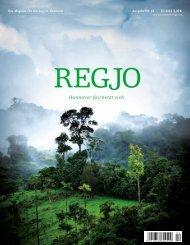 RegJo Hannover Ausgabe 4/12 - Polo+10 Das Polo-Magazin