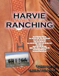 HARVIE RANCHING HARVIE RANCHING
