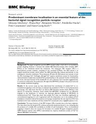 Predominant membrane localization is an essential feature of the ...