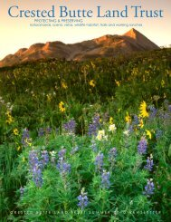 CBLT Financial Statement - Crested Butte Land Trust