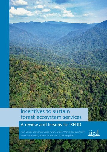 Incentives to sustain forest ecosystem services - Iied - International ...