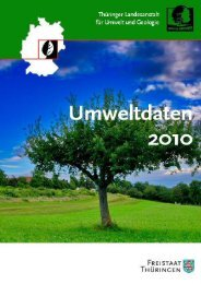 Umweltdaten 2010 - Thüringer Landesanstalt für Umwelt und ...
