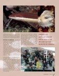 Fotografie - Jan Azier - Page 4