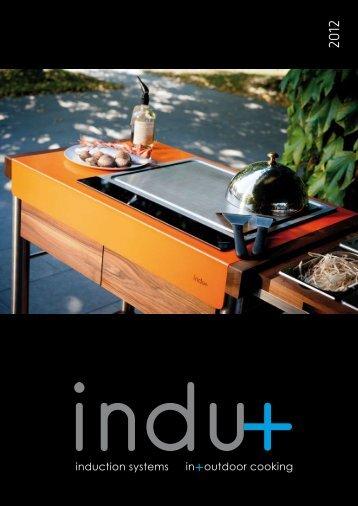 40 - Induplus Induction Wok