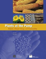 Biofuels, Climate Change, and Sustainability - World Resources ...