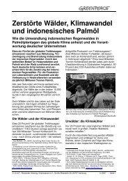 Zerstörte Wälder, Klimawandel und indonesisches ... - Greenpeace