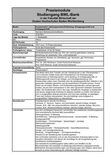 Praxismodule Studiengang BWL-Bank