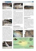 D - Tropenparadies - Page 3