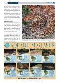 Die Bullennatter - Tropenparadies - Page 2