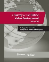 Survey of Online Video Environment 2010 - iCommons