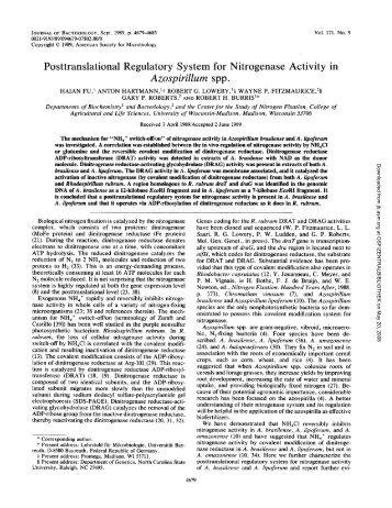 Journal of Bacteriology - bashanfoundation
