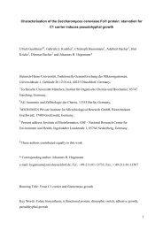wt fol1 - Molecular Biology of the Cell