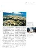Mit Wind und Sonne das Klima schützen - Page 7