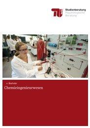 Chemieingenieurwesen - Allgemeine Studienberatung an der TU ...