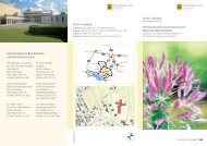 Flyer Beckenbodenzentrum, PDF-Version, ca. 0,4 MB - Klinik Tettnang