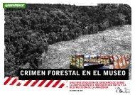 crimen forestal en el museo - Greenpeace