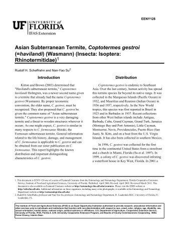 Asian Subterranean Termite, Coptotermes gestroi - EDIS - University ...