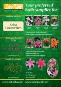Your preferred bulb-supplier for - Zabo Plant Inc - Page 4