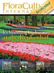 It's Blooming Big Business At The Keukenhof