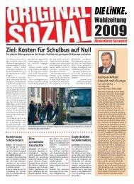 Wahlzeitung - DIE LINKE Sachsen-Anhalt