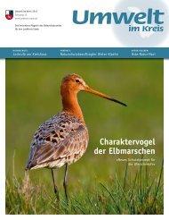 Charaktervogel der Elbmarschen - Umwelt im Kreis - Landkreis Stade