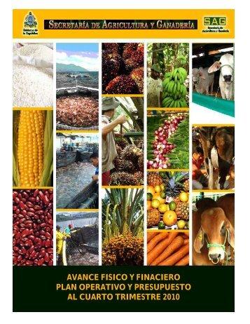 Informe SAG al Cuarto Trimestre 2010 - Secretaría de Agricultura y ...
