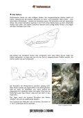 Das Wildschwein - Tierforscher - Seite 4
