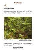 Das Wildschwein - Tierforscher - Seite 7