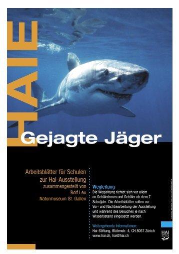 Arbeitsblätter Haie und Ausstellung - Hai-Stiftung