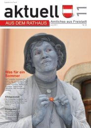 (5,74 MB) - .PDF - Freistadt