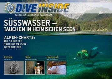 Web-Version (12.1 MB) - DiveInside