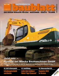 Als PDF downloaden - Baublatt