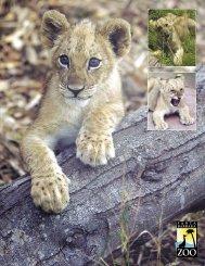Annual Report 2004 - Santa Barbara Zoo