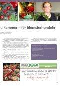 Vitt är trendigt, även när det gäller julblommor - Vansbro kommun - Page 2