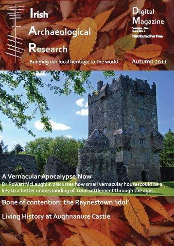 The Raynestown 'idol' - Irish Archaeological Research