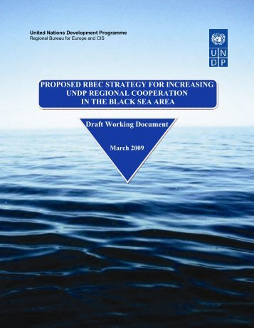 Proposed RBEC Strategy - UNDP Black Sea Trade and Investment ...