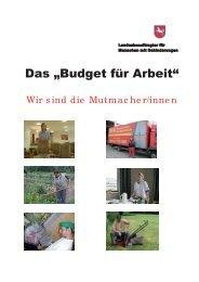 """Das """"Budget für Arbeit"""" - Behindertenbeauftragter des Landes ..."""