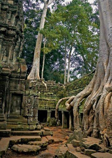 Kambodscha/Laos - Lotus Reisen
