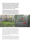 Heft V.indd - Albert Braun - Page 6