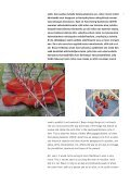 Heft V.indd - Albert Braun - Page 7