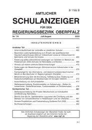 SchulanzeigerJuli2003.pmd - Regierung der Oberpfalz - Bayern