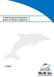 T7 RNA Polymerase Expression System for Bacillus megaterium