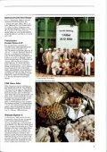 Kurznachrichten aus den Bereichen... - Deilmann-Haniel Shaft Sinking - Seite 5